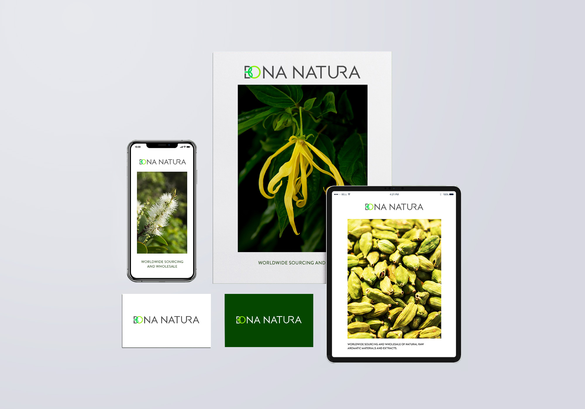 bonanatura_branding_elements