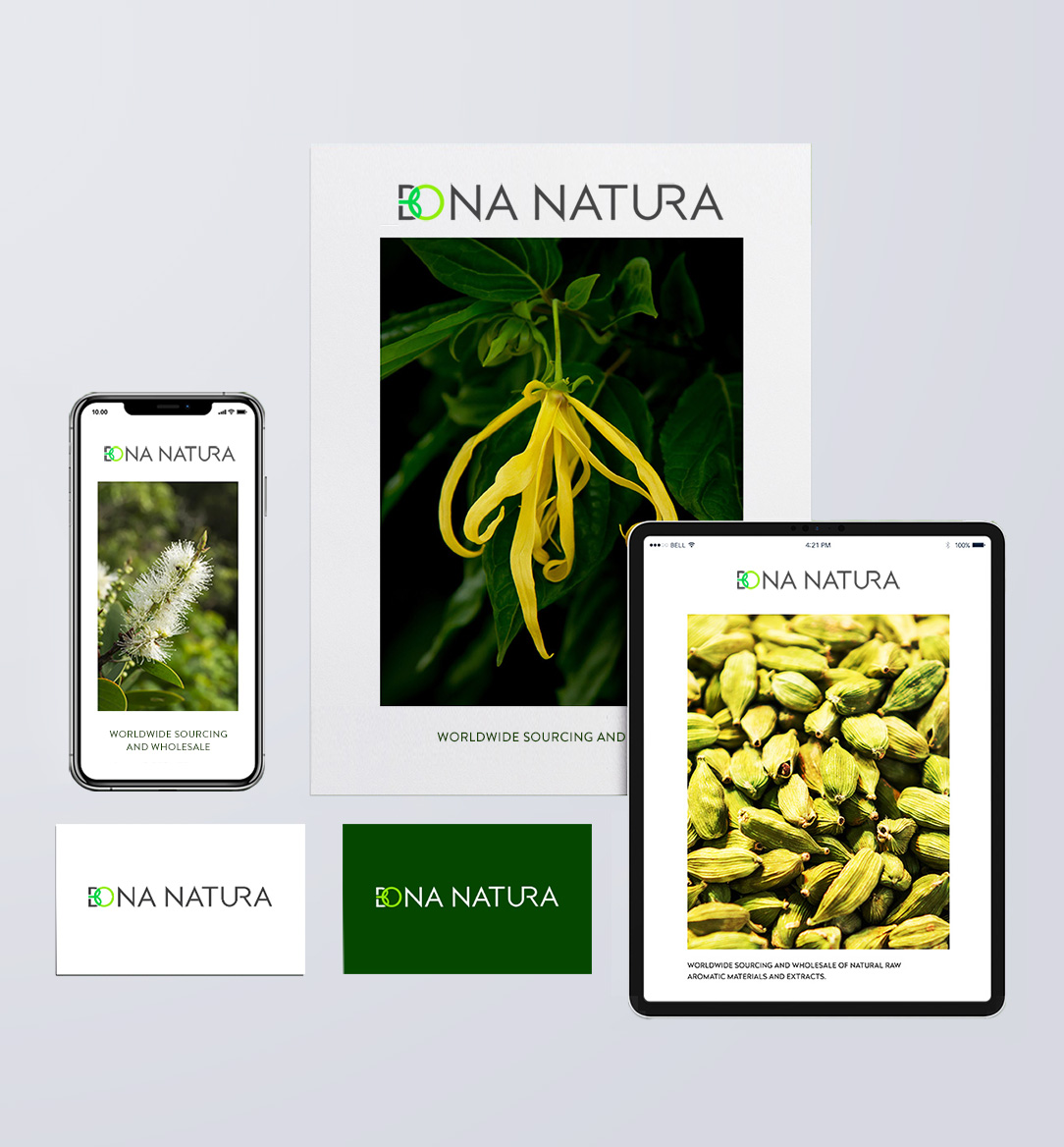 bonanatura_branding_elements_mobile